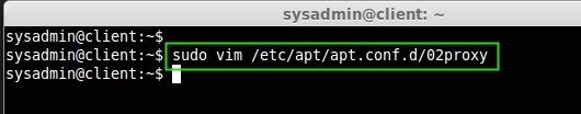Create Apt Proxy File
