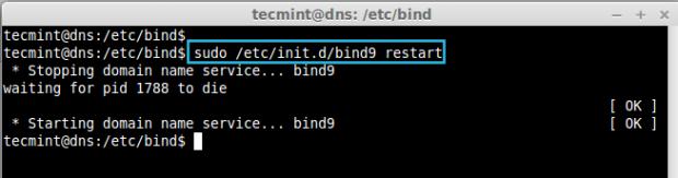 Start DNS Service