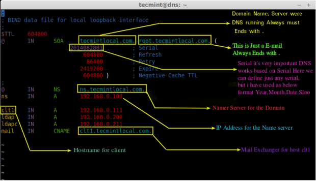 Understanding DNS Zone Entry